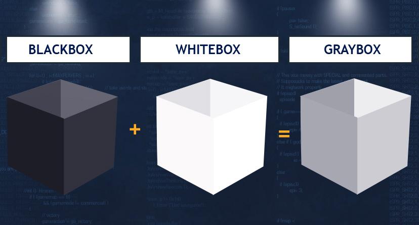 Sızma Testi Kavramları - Blackbox - Whitebox - Graybox-penetrasyon-Testi Hizmeti - Pentest